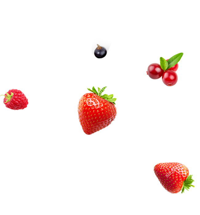 Berries Group